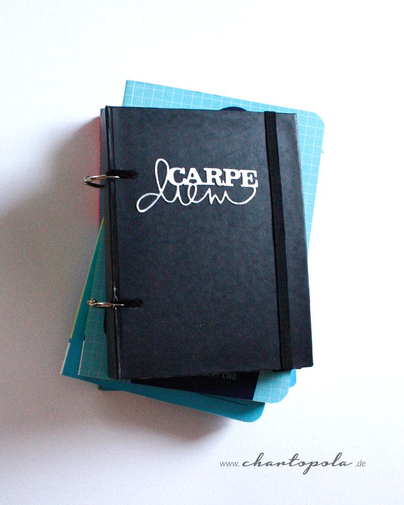 carpe-diem-planer